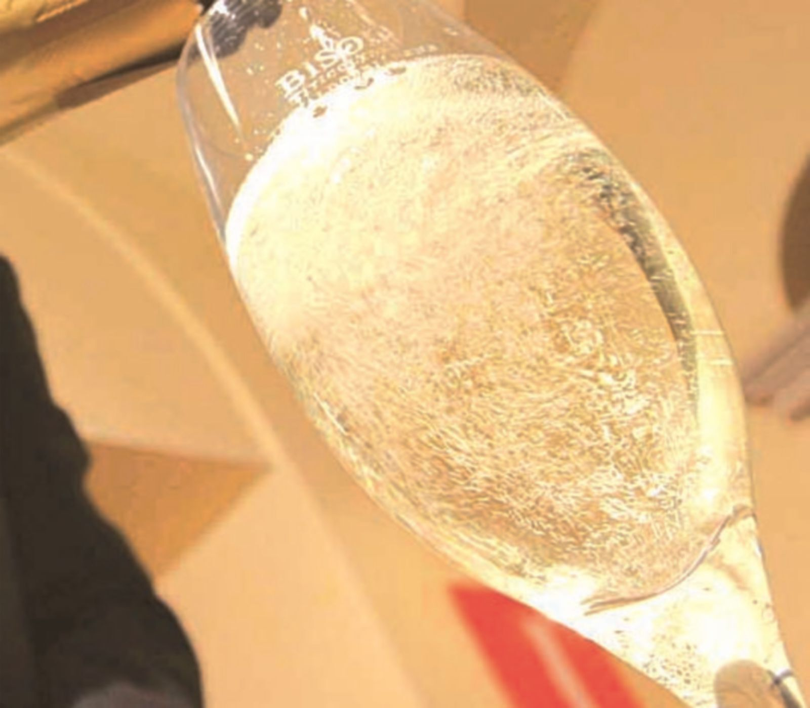 Truffa del vino, raggirato ristoratore di Forlimpopoli. Pagate 520 euro sei bottiglie di vino scadente