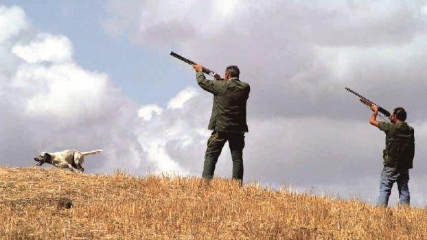 Moria di uccelli a Ravenna, stop alla caccia nella Valle della Canna
