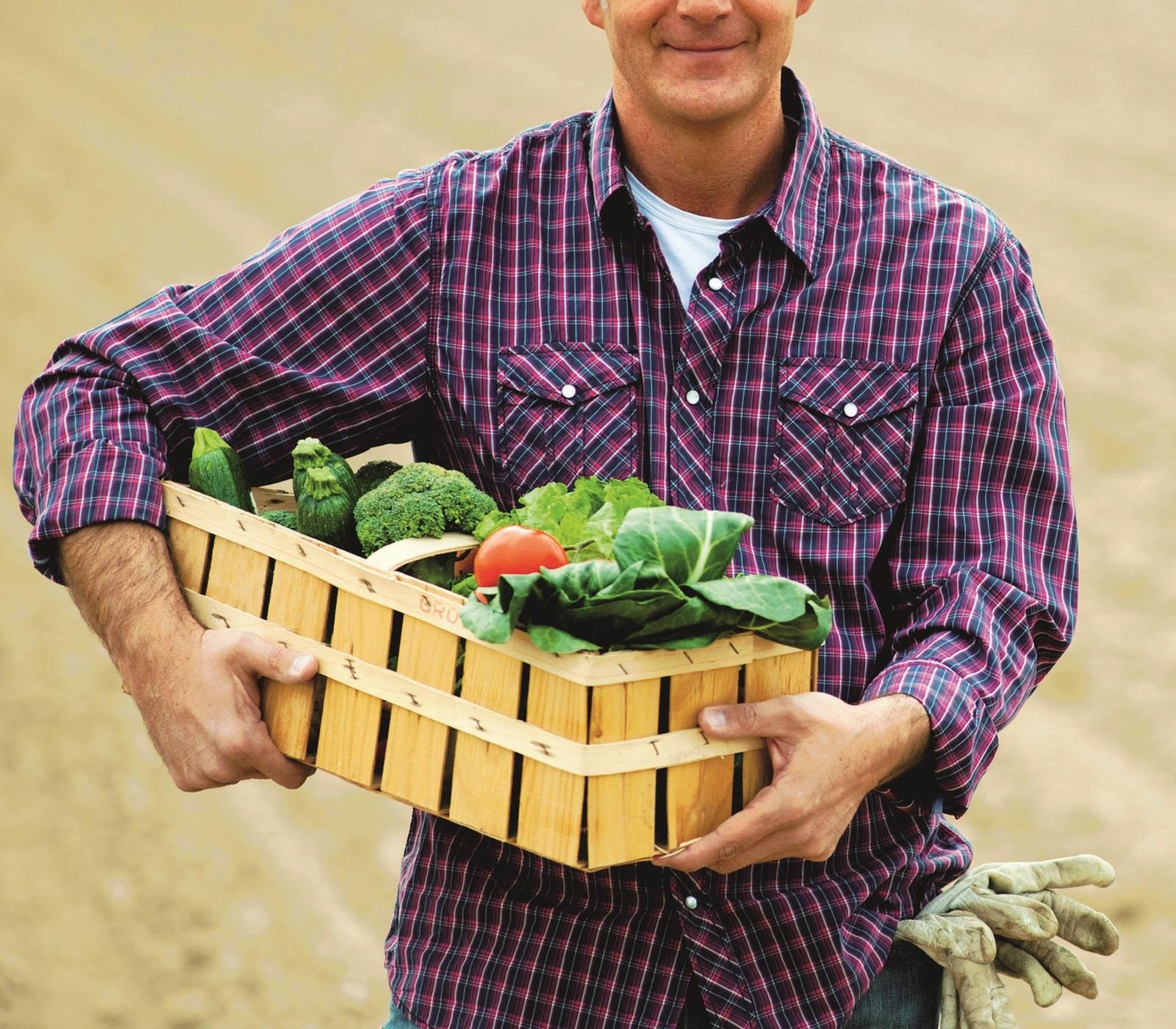 Mercato ortofrutticolo Cesena, agricoltori  a lezione dai ricercatori