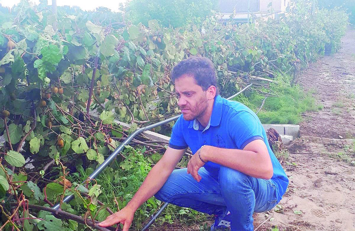 Maltempo a Faenza, Coldiretti chiede lo stato di calamità