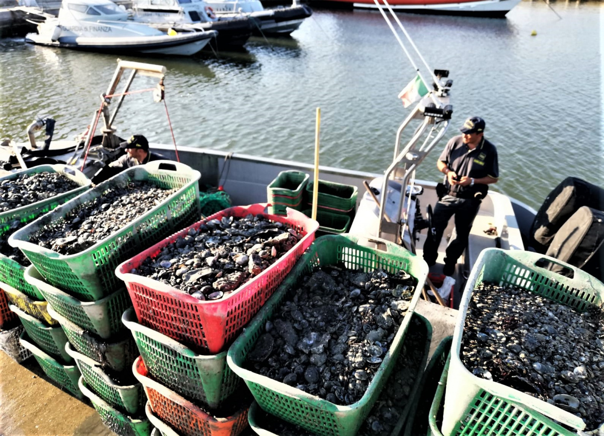 Ravenna, pescano abusivamente sei quintali di vongole: denunciati