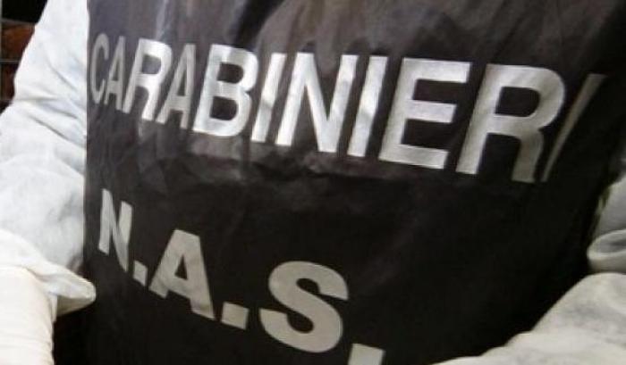 Rimini, sequestrate 23 tonnellate di olio in un oleificio