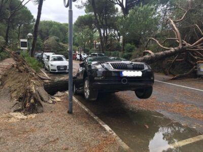 """La rinascita di Milano Marittima dopo il tornado """"grazie alla cooperazione"""""""