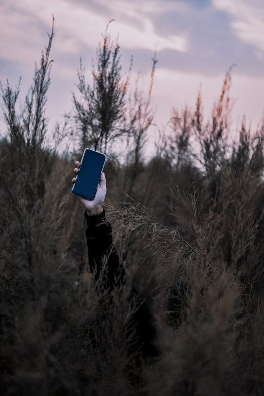 Cesena, perde il telefonino, migrante lo restituisce e rifiuta ricompensa