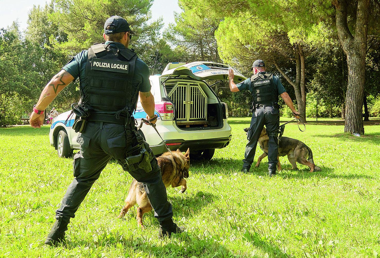 A Rimini trovava cocaina nello scivolo dei bambini al parco