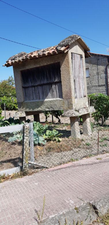Verso Santiago, da Laza a Ourense