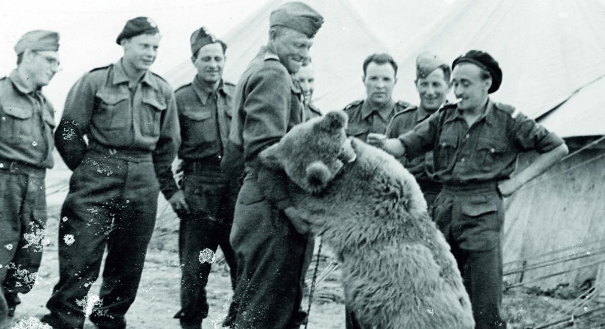 """Liberazione Forlì, """"coi soldati polacchi anche un orso"""""""