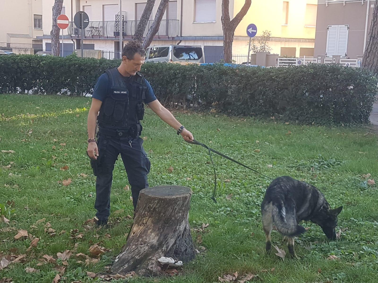Iago e Bruce, servizio antidroga fuori dalle scuole di Rimini