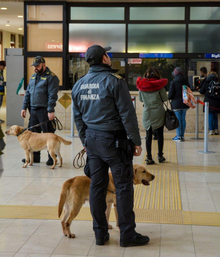 Pusher fermato in stazione a Ravenna grazie al fiuto di Bac