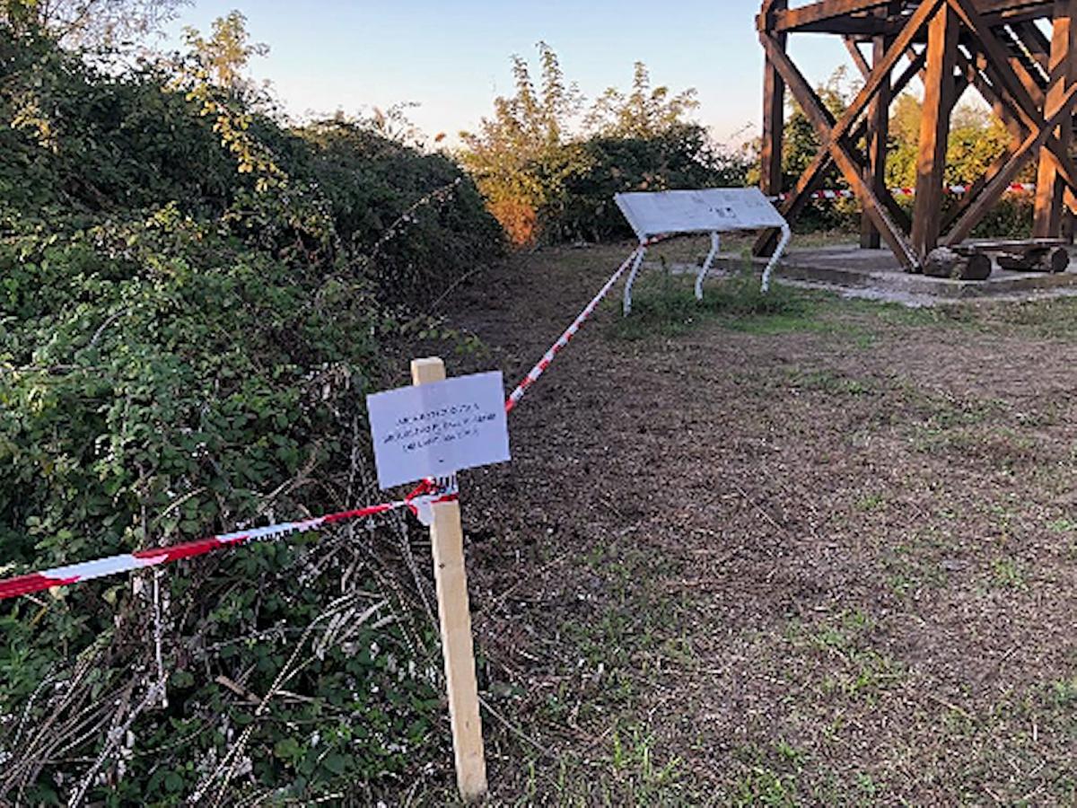 Moria di uccelli a Ravenna, sotto sequestro alcune aree della valle