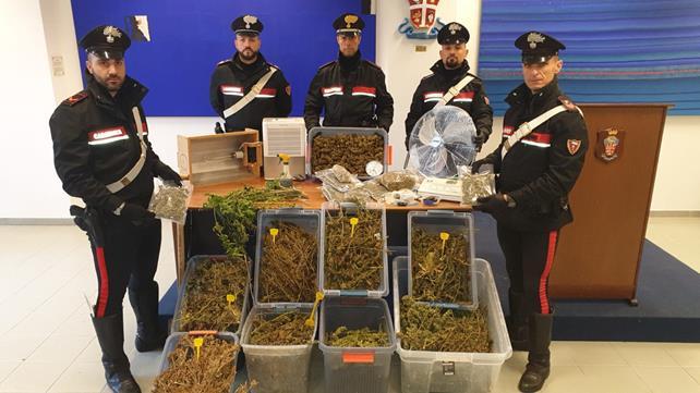 Ravenna, in cella il coltivatore hi-tech di marijuana preso coi droni