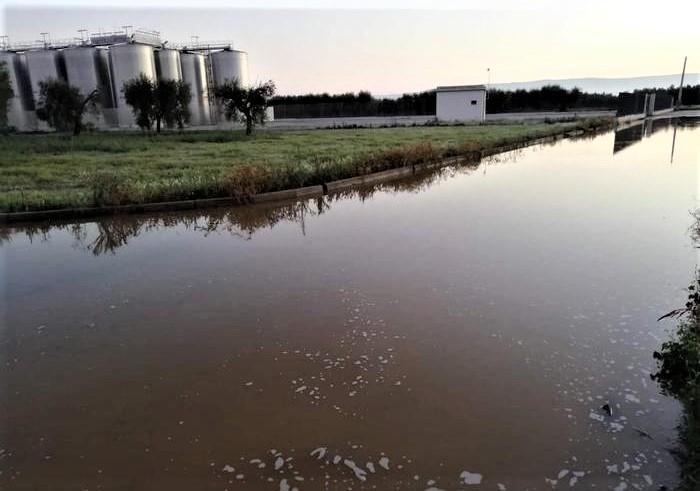 Silos svuotati a Foggia, Ravenna ospita cantina colpita a GiovinBacco