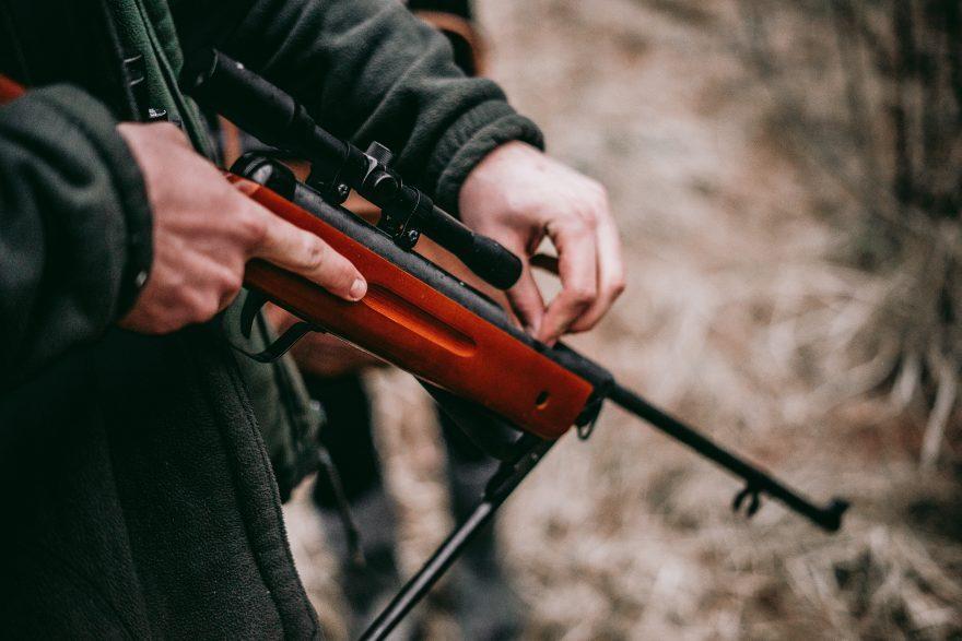 Pennabilli, cane ucciso con tre colpi di fucile