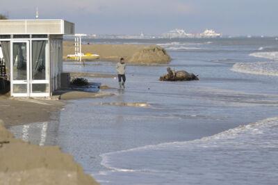 Allagamenti anche a Ravenna e sul litorale. Cede duna a Marina