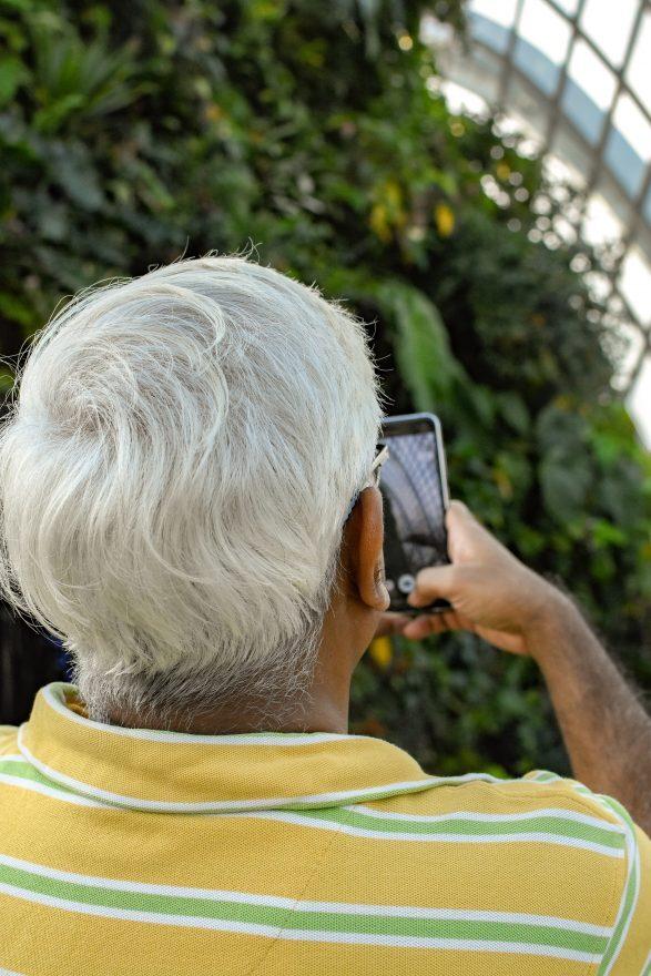 Truffa del falso incidente: pensionato riminese consegna 490 euro