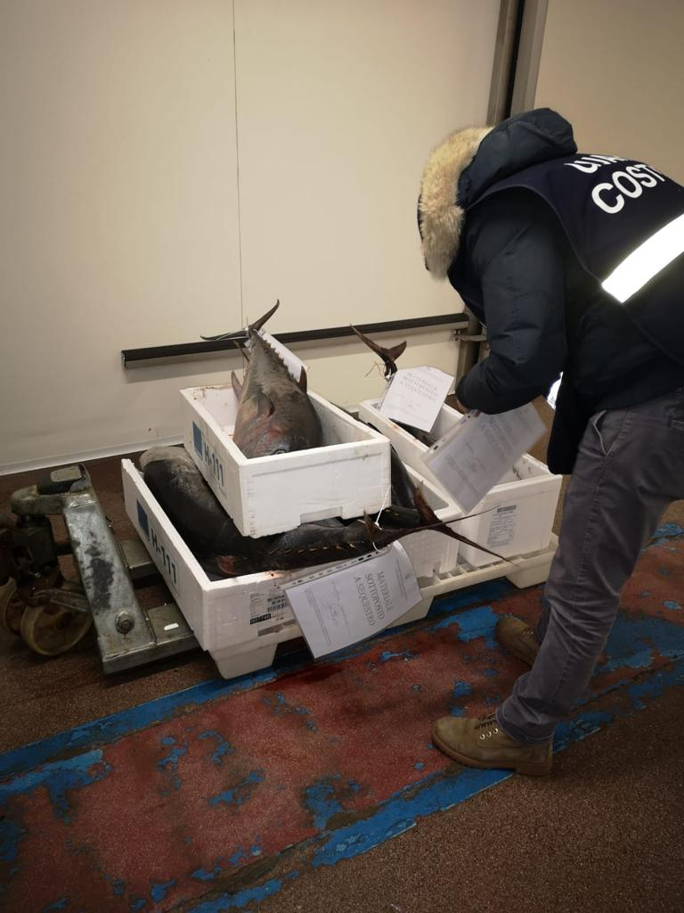 Pesca, multe per decine di migliaia di euro e sequestri di pesce