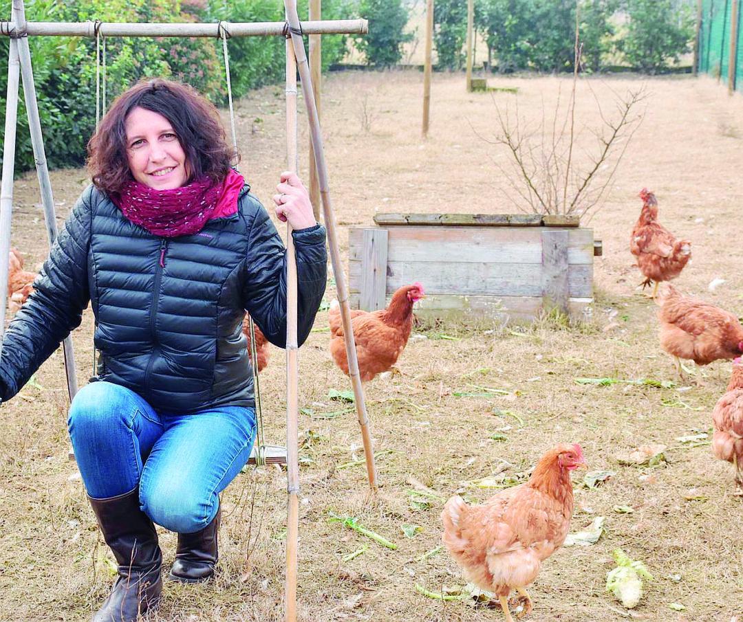 Imola, il pollaio sociale va in Tv da Amadeus