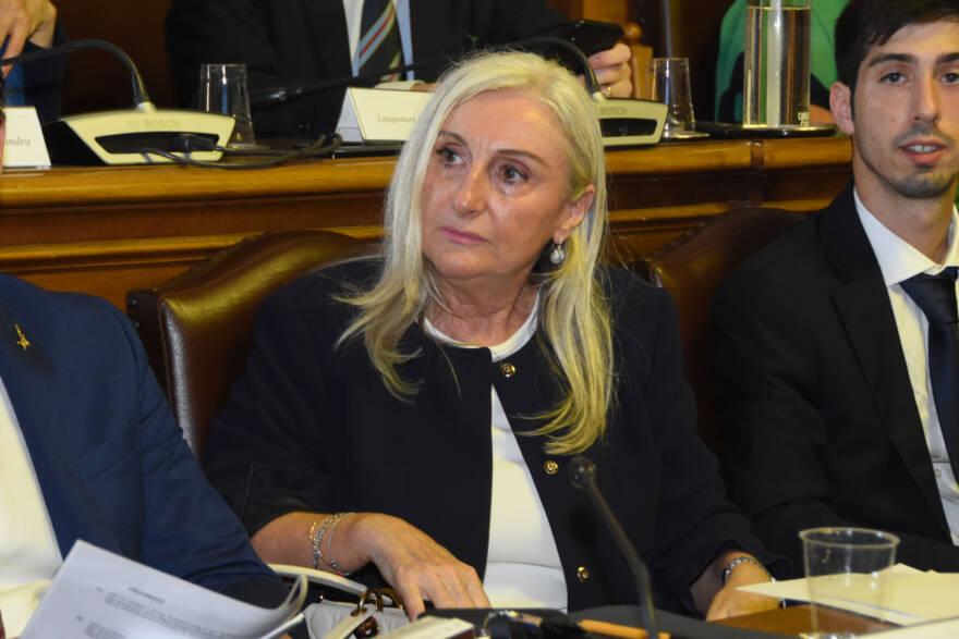 """Forlì, consigliera comunale contagiata: """"Fase acuta alle spalle"""""""
