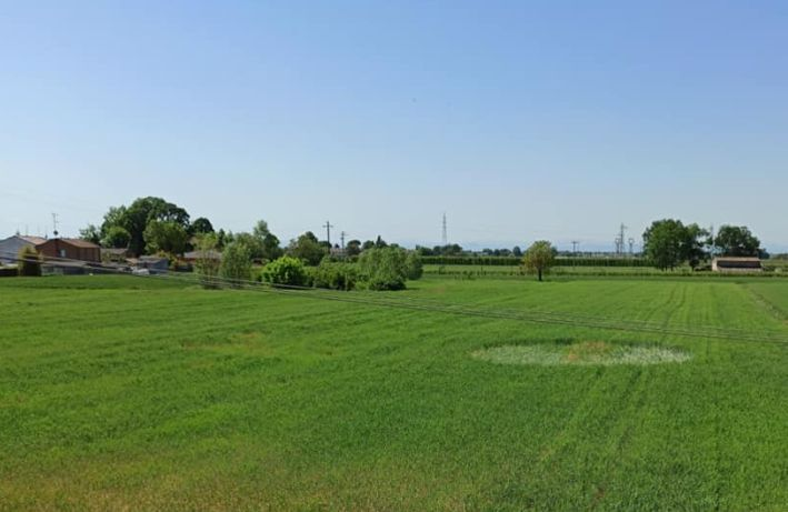 Ravenna, cerchio nel grano compare nei campi a Santerno