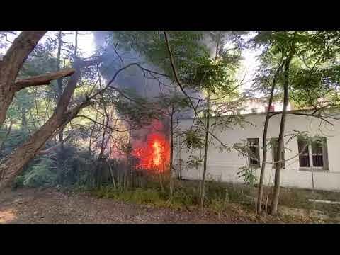 Cesenatico, incendio al parco di ponente - IL VIDEO