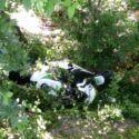 Rocca, finisce con la moto in scarpata: ferito 33enne