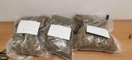 Arrestati dalla polizia di Cesena con un chilo e mezzo di marijuana