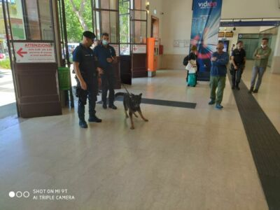 Rimini. Cani antidroga cercano spacciatori tra parchi e Metromare