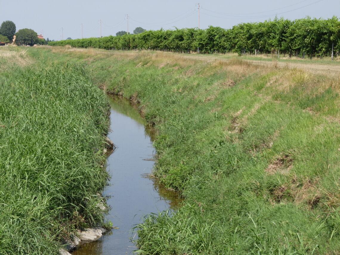 Imola, vietato l'uso dell'acqua del Gambellara per irrigare