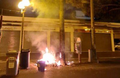 Rimini. Rovesciano i rifiuti e danno fuoco all'albero