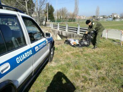 "Bellaria, multati sette ""furbetti"" dei rifiuti"