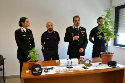 Santa Sofia, spaccia e coltiva marijuana: arrestato 21enne