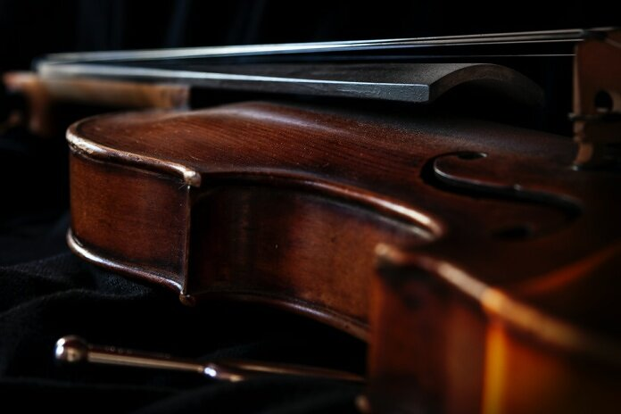 brown and black wooden violin