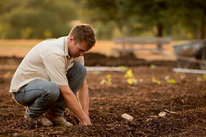 man in white shirt planting at daytime